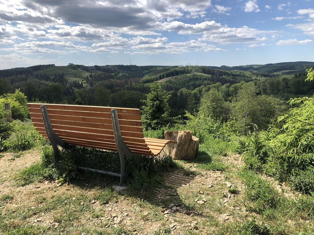 Weitblick Wald-Aktiv-Pfad