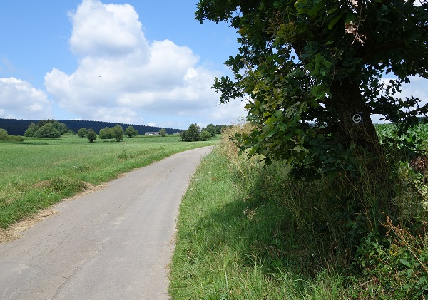 Wandern_Jagdhorn_Valbert