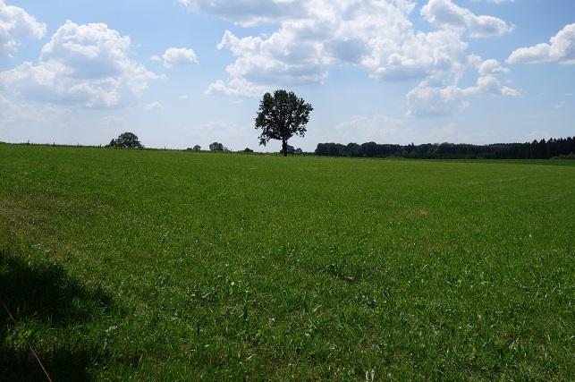 Wandern_Wanderung_Halver